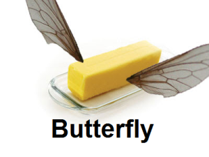 Literal butterfly